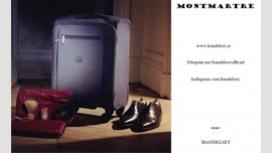 چمدان دلسی مدل مونت مارتر